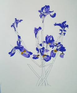 irises, silk screen print 2013