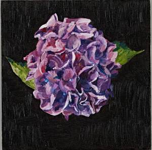 purplehydrangea_oil_dl_w